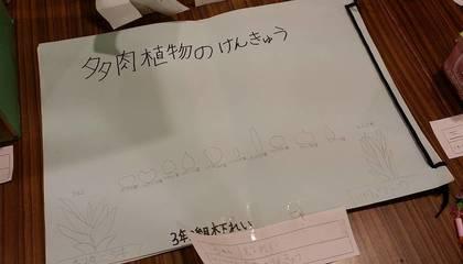 3年生夏休みの自由研究.jpg