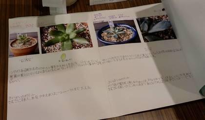 3年生夏休みの自由研究 (3).jpg