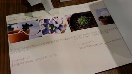 3年生夏休みの自由研究 (4).jpg